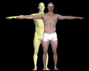 body system shot