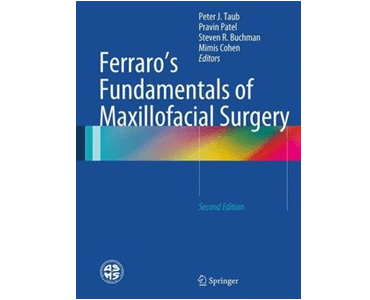 B_Ferraro Book